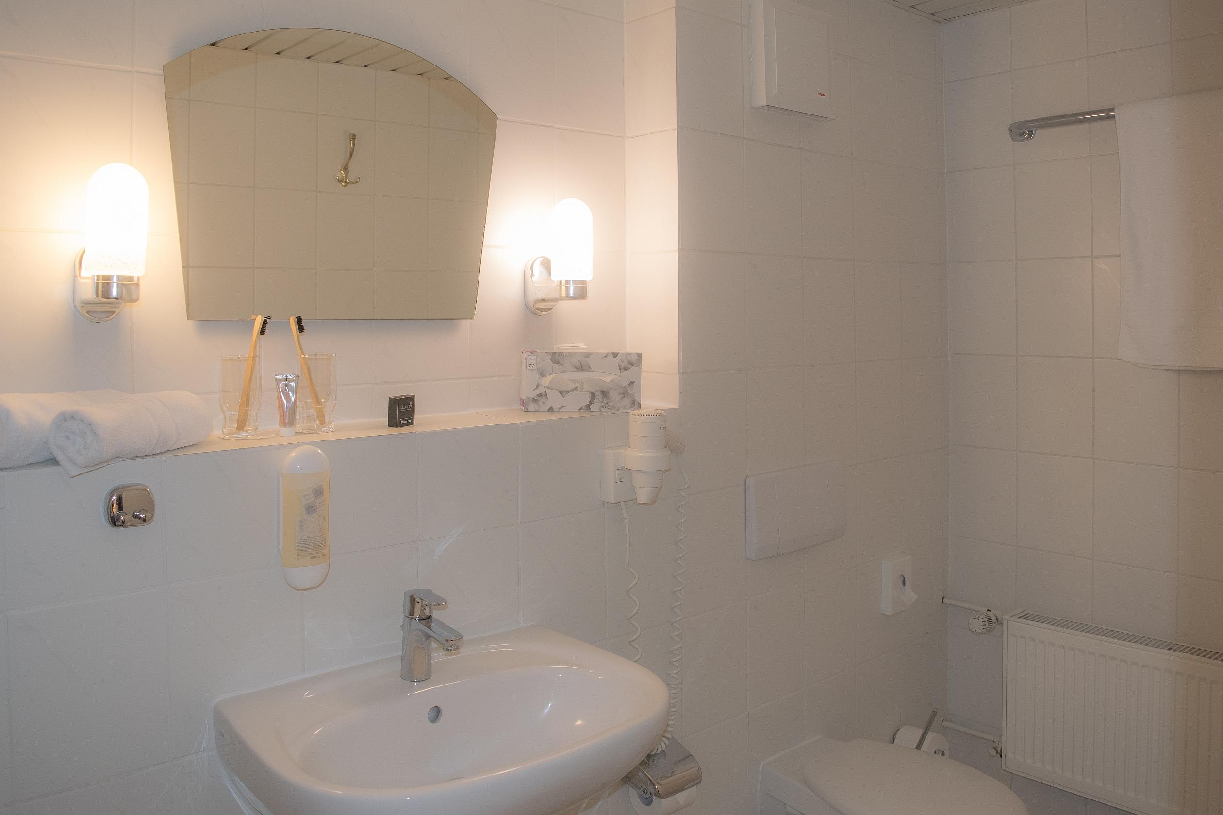 Badezimmer Beispiel WS DZ