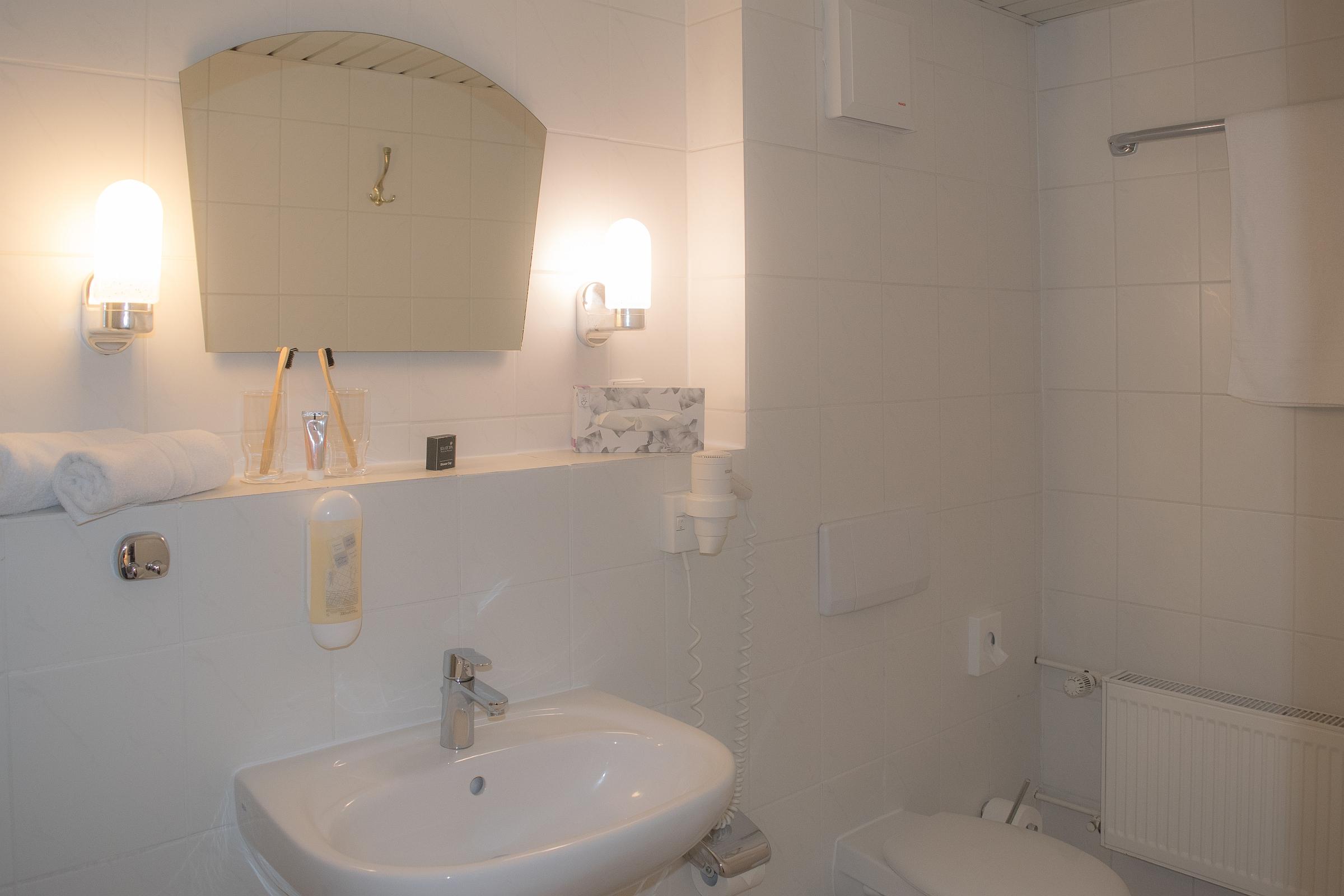 Badezimmer Beispiel WS Fam